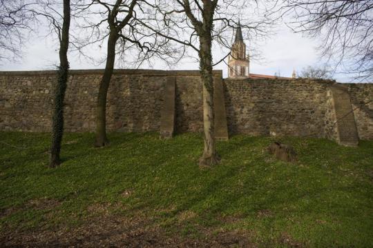 Stadtmauer Neubrandenburg thumbnail