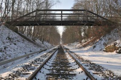 Holzbrücke thumbnail